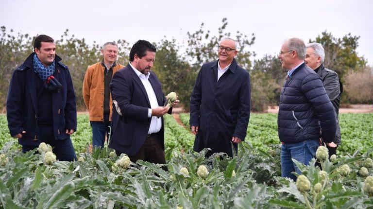 Actividades para la promoción de la alcachofa de Benicarló
